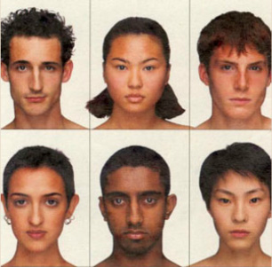 Face Variations by Ethnic Group