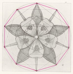 The Golden Decagon - Flowers