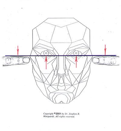 Posição da íris-cabeça-inclinação