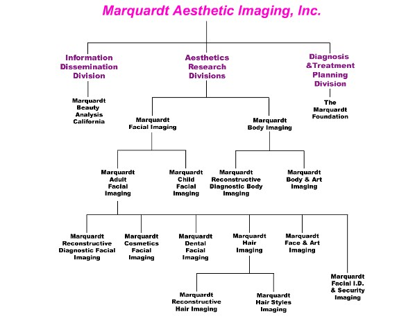 Corporate Structure - Marquardt Aesthetic Imaging, Inc.